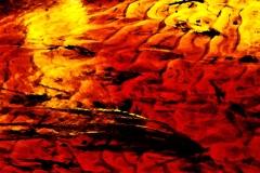 241-fire-orange-2
