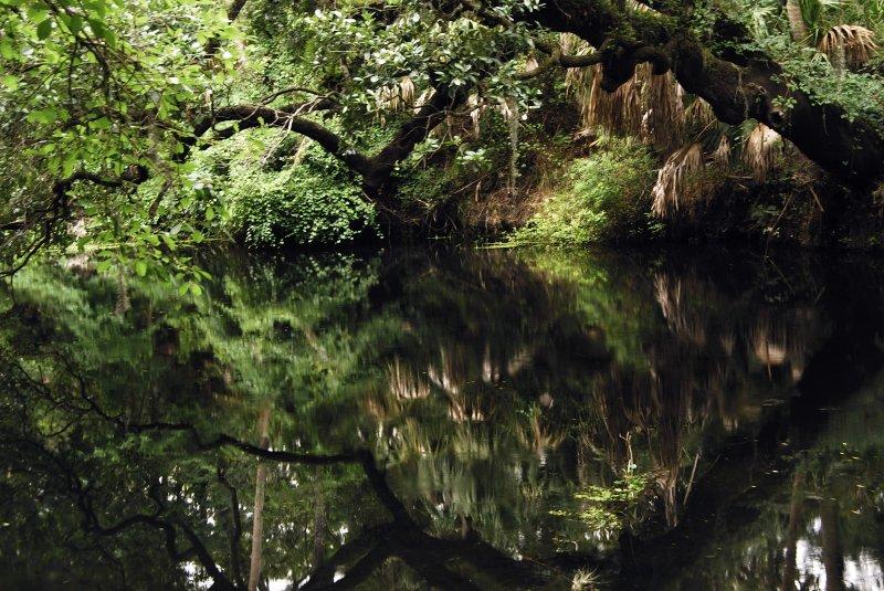 37-hillsborough-river-calm