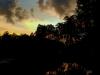 Odessa Evening