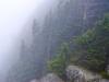 in-the-clouds-roan-mountain-tenn